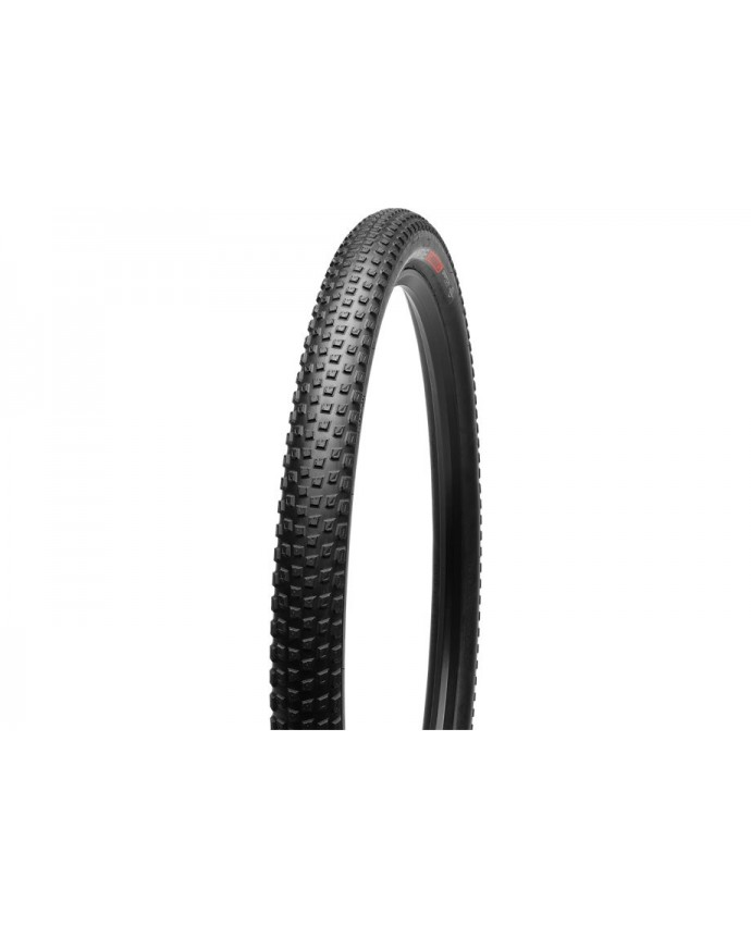 SW RENEGADE 2BR TIRE 29X21