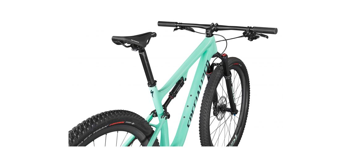 Epic Expert Carbon 29 XC Specialized 2021 Gloss/Satin Oasis/Forest Green